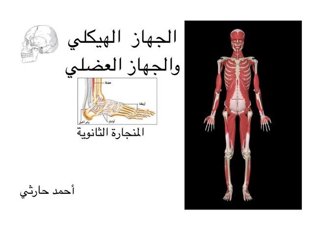 الجهازان الهيكلي والعضلي by احمد كريري