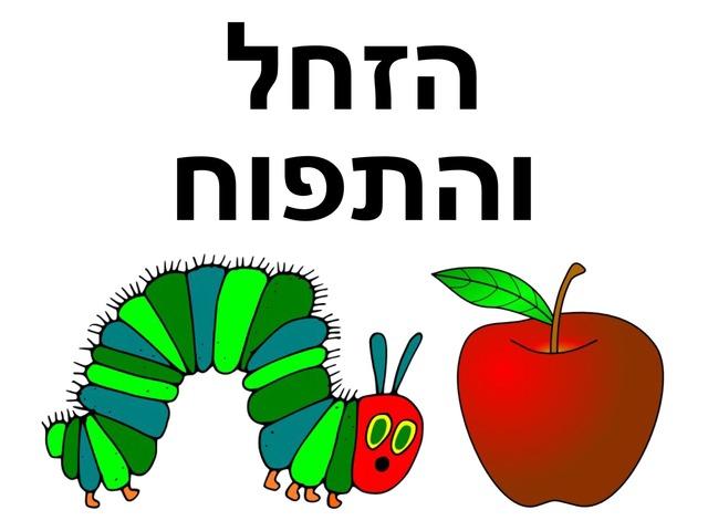 הזחל והתפוח by Beit Issie Shapiro