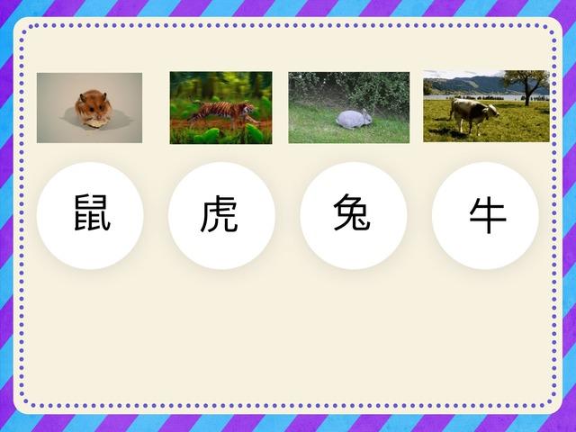 動物認字1 by Chinese International School Reception