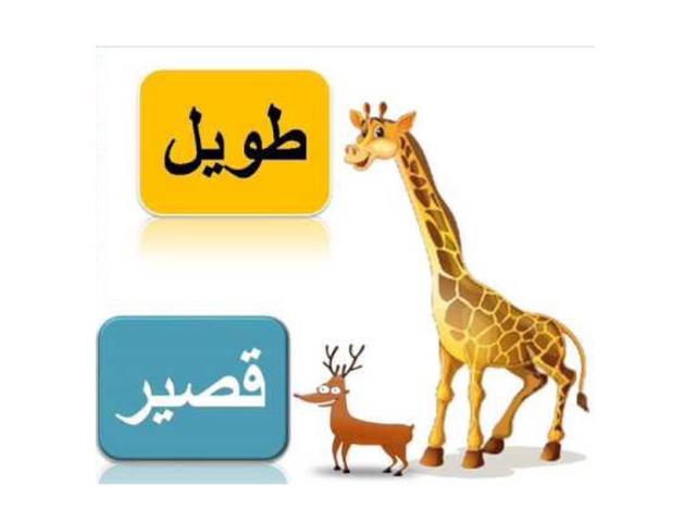 العاب by Hind Alotaibi