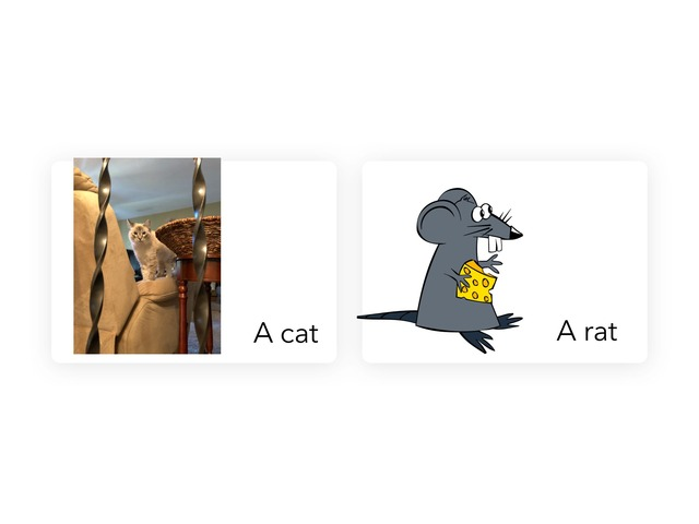 A cat, a rat and a T-Rex by MOLLY THOMPSON