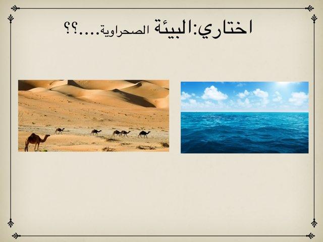 ثالث by هاجر علي