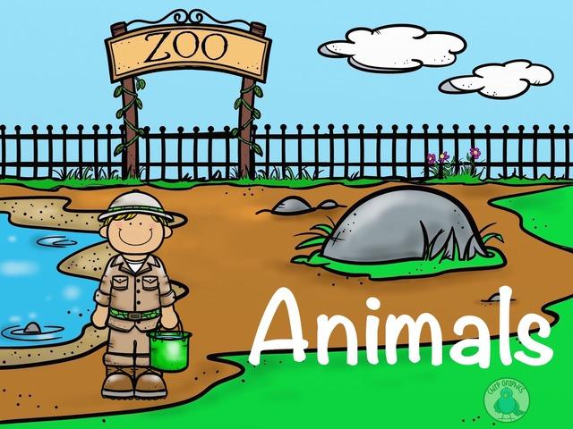 Animals by Shahzalan Dms