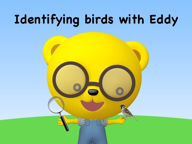 Identifying Birds With Eddy by TinyTap creator