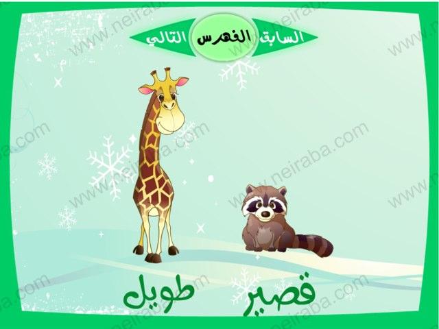 لعبة 65 by Huda Alkhayat