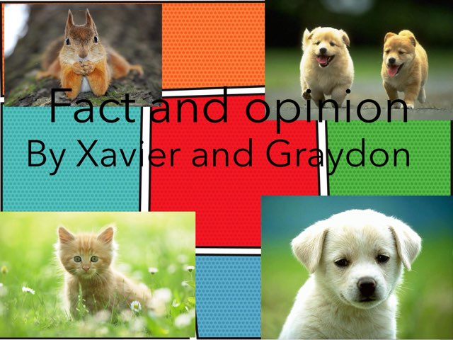 Fact And Opinion by Jennifer Alexander