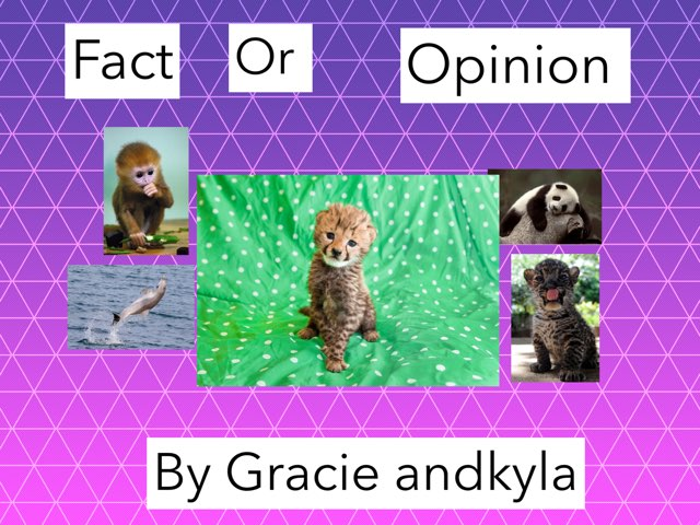 Fact Or Opinion by Jennifer Alexander