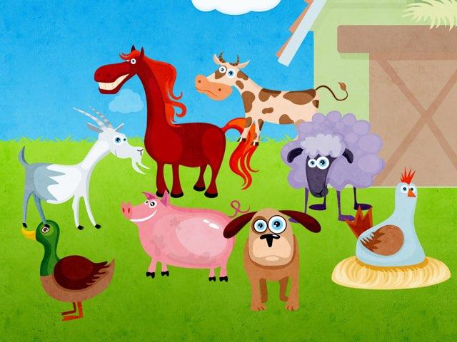 Farm Animal Identification  by Seana Evelyn
