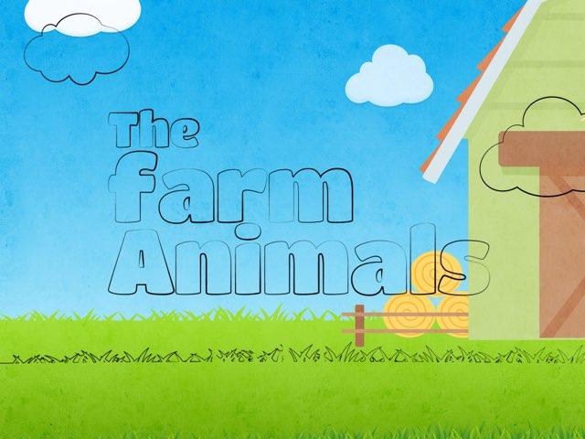 Farm Animal  by Kasy lambert