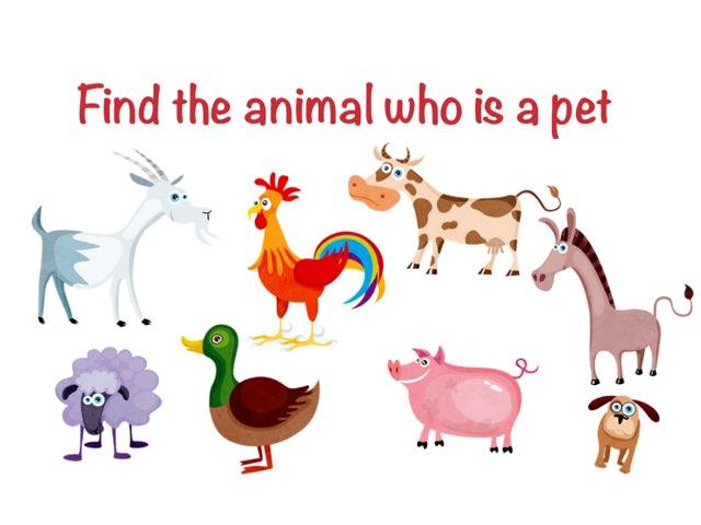 Farm Animals And Pets  by Escola lápis de cor