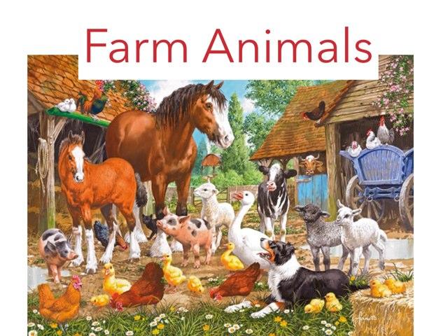 Farm Animals by Asma Omar