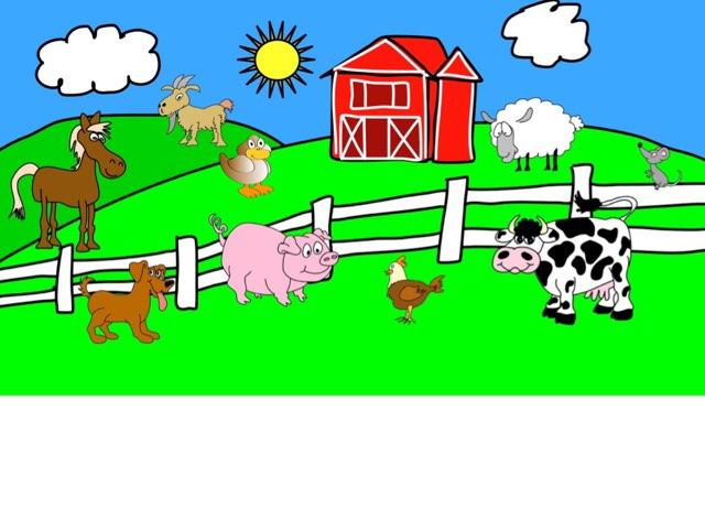 Farm Animals by Erin Wierzbinski