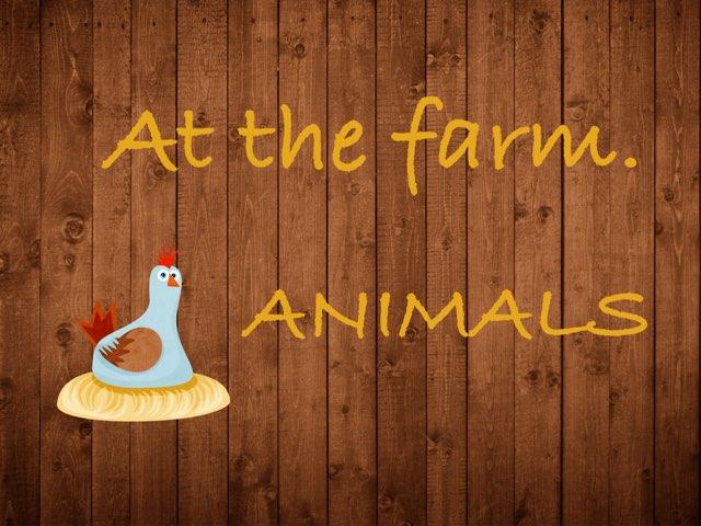 Farm Animals by Bente Andsbjerg
