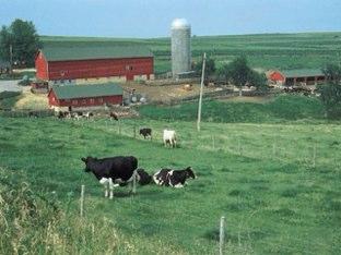 Farm by Lydia Väätäinen