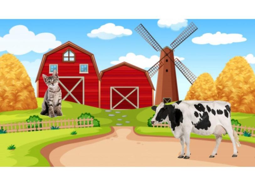 Farm animals by julieta garcía