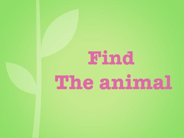 Find The Animal by uri lazar