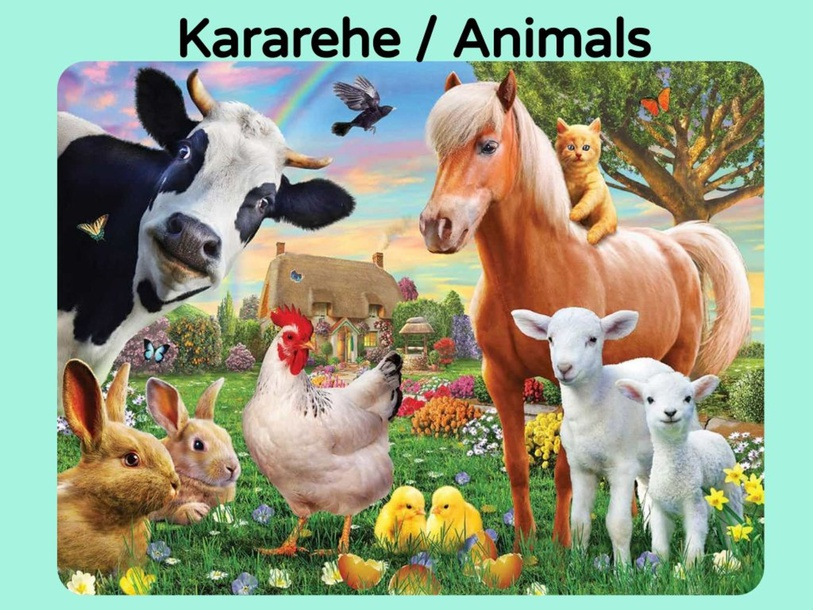 Find the Kararehe / Animals by Adelle Porteous