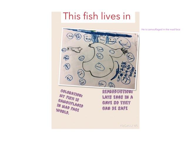 Fish Adaptations R.M. by Sarah Bosch