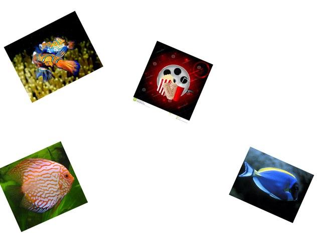 Fish by Jeanne Mccaffrey