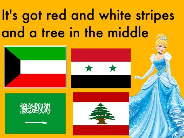 Flags2 by Mariam Abu Kamar