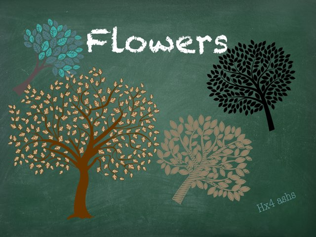 Flowers by HX4 ashs