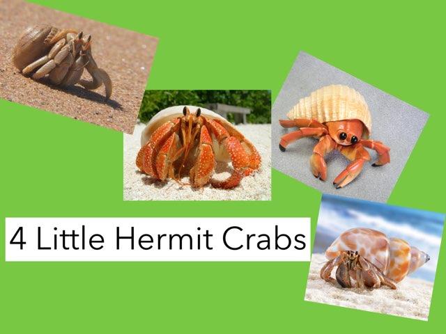 Four little Hermit Crabs by Ma wert