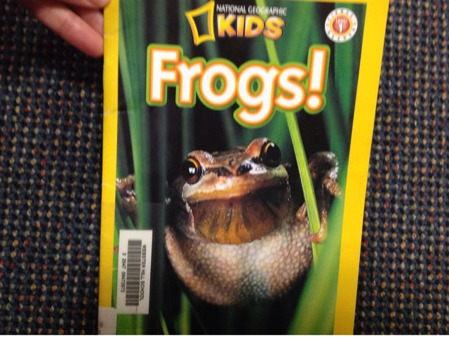 Frog Facts With Nicholas by Lindsey Roberts-Walstrom