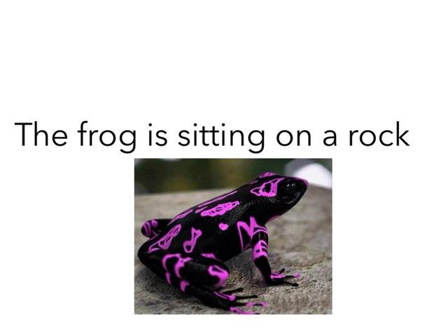 Frog by Khoua Vang