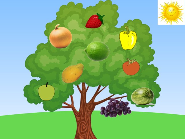 Frutas by Escola lápis de cor