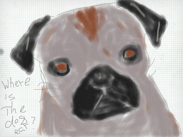 Gals Dogs by Nira Skirt