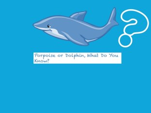 Porpoise is different than a dolphin #AugustApps by Linda Lonergan
