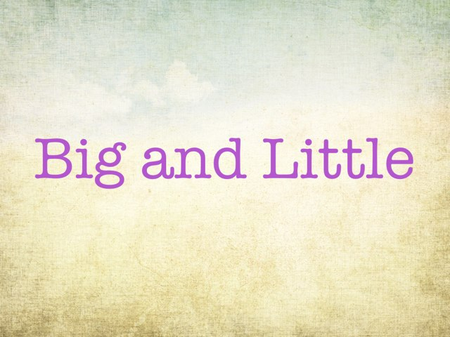 Big and little shapes by Bonnie BRICKER