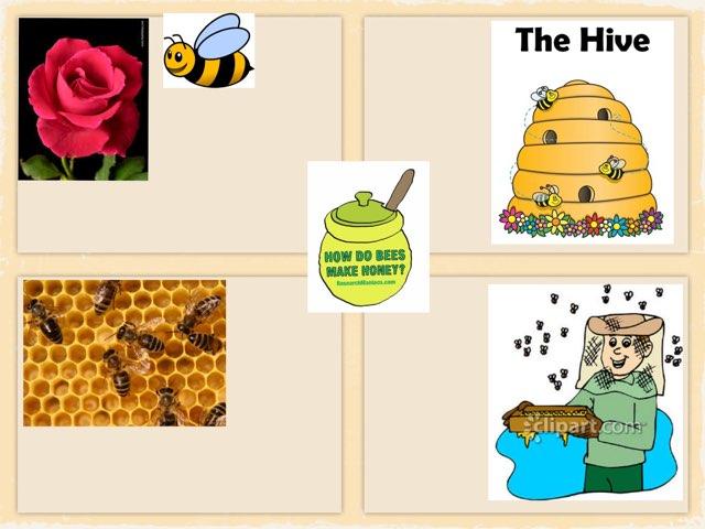 How do bees make honey? by Sama Salama