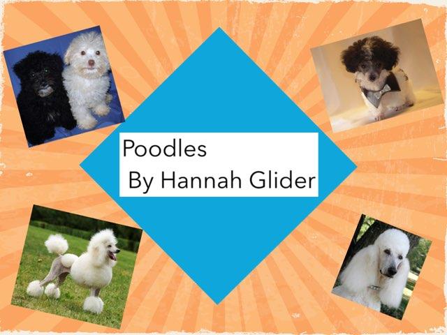 Hannah- dogs by Jessica tamaccio