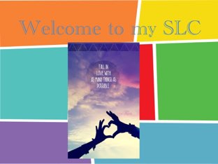SLC by Claire An