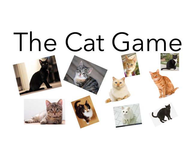 A game to practice cats. by Room 207