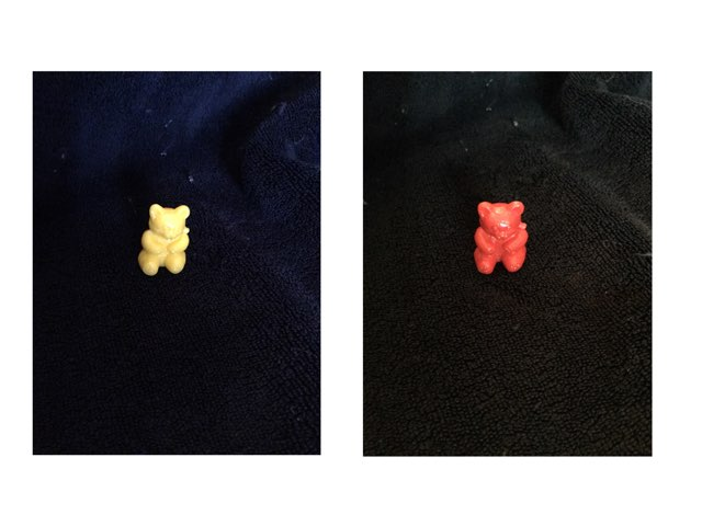 Bears by Emily Wiley