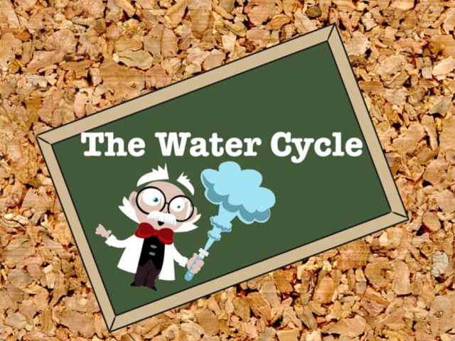 The different stages of the water cycle by Keriann McElroy