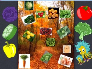 Fruit and Vegetables  by Susan Mulquiney