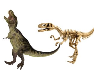 It is about Dino's ! by Terrence herron