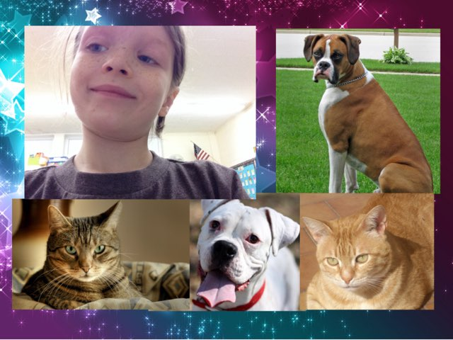 All about Morgan's pets! Friendship  Friends  By Morgan Jeffrey by Molly Jeffrey
