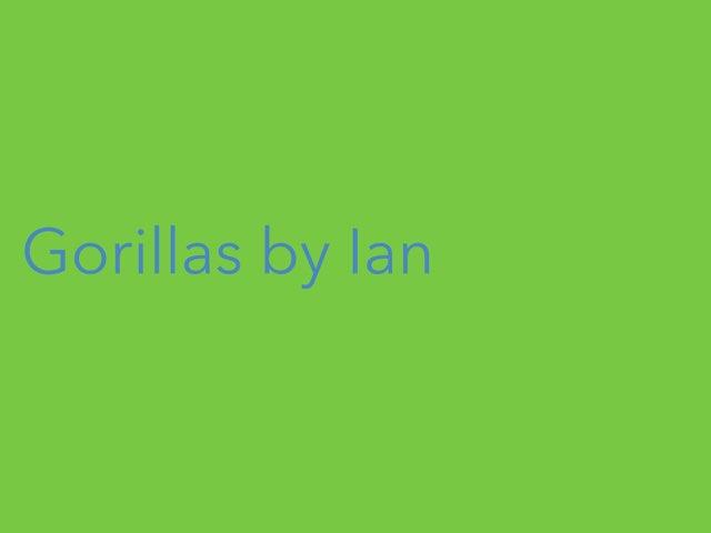 Ian's gorilla report by Leslie Roberts