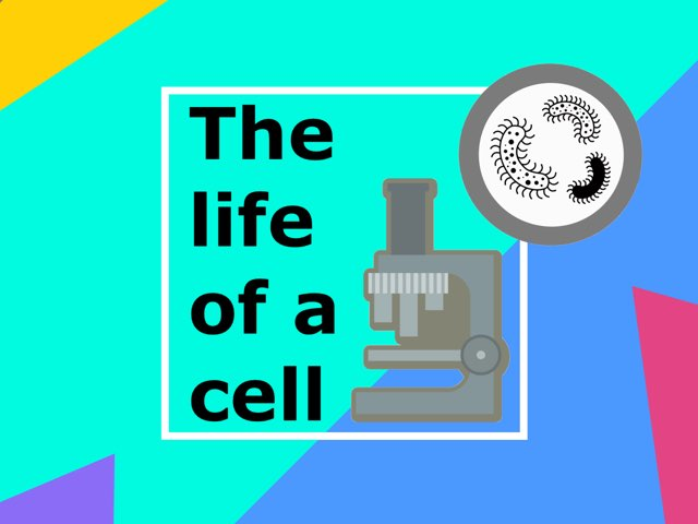 The Life Of A Cell by K1 Nich