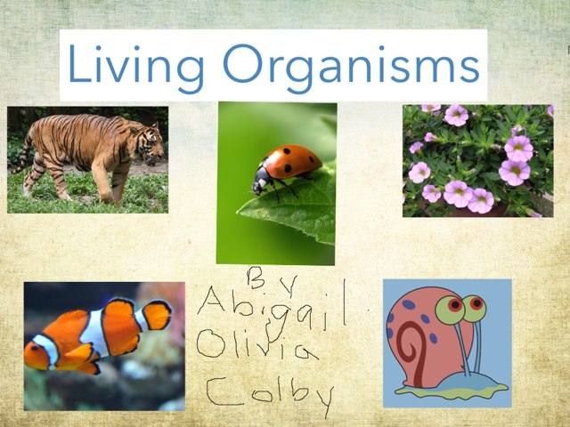 Living organisms  by Alex waldner