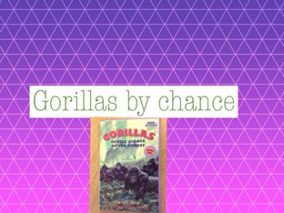 Chance's gorilla report by Leslie Roberts