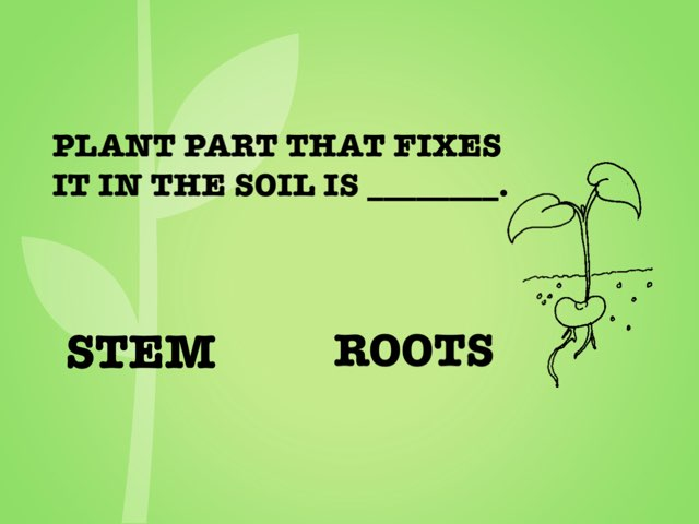 Soil by TinyTap creator