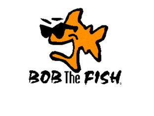 Bob by Keira Hillsley