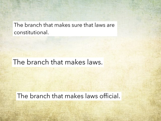 Three branches of government  by crystal wolfer