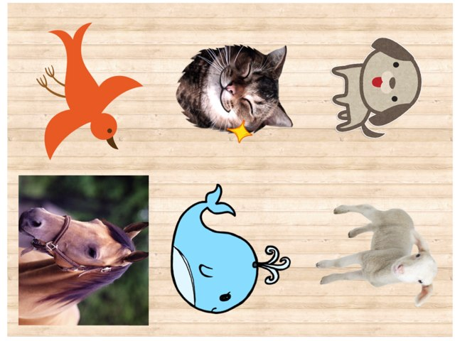 Animales by Emily Janzen