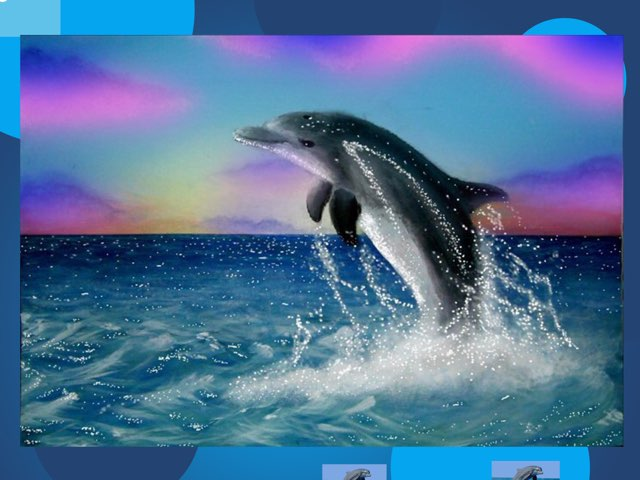 Ali's awesome dolphin project! by Judith gragg